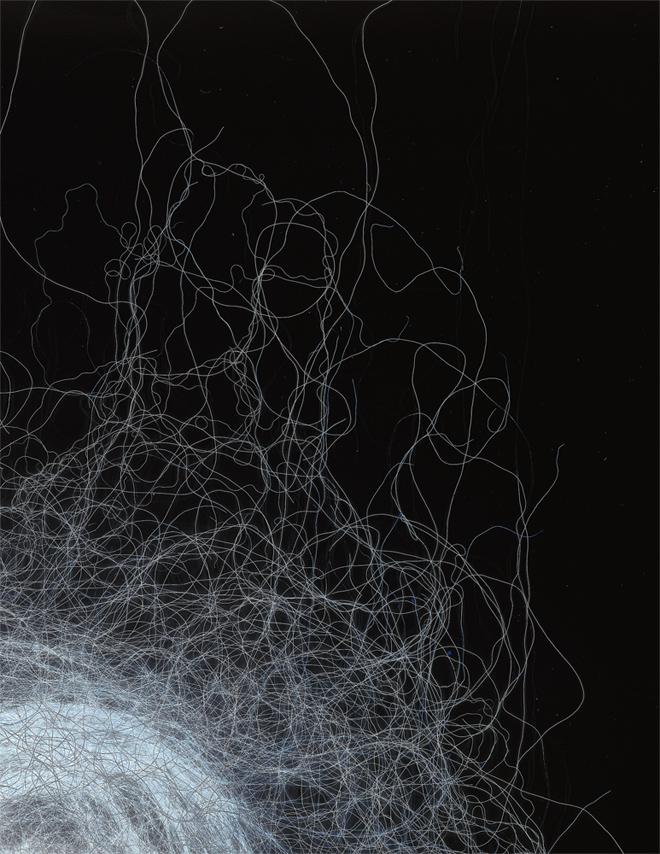 Wool, 2020