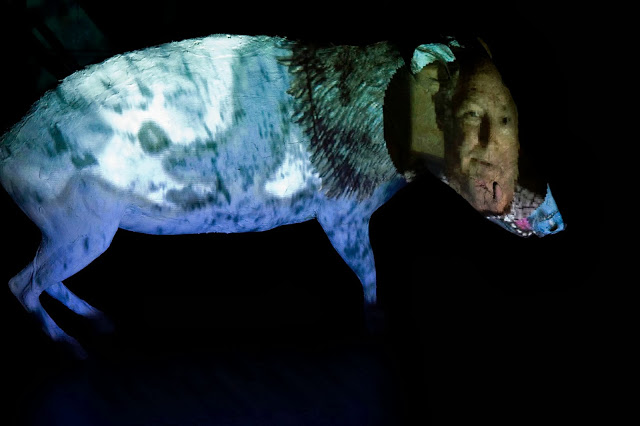 Dad on Boar, Video Projections Sculpture