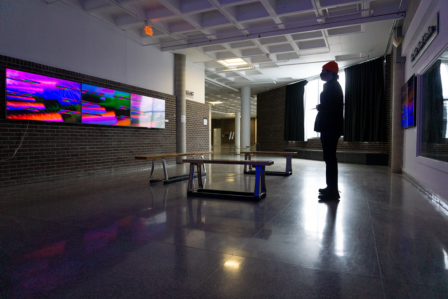 Allen Riley's Electronic Pastoral in TSI Gallery